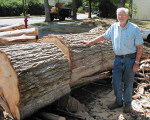 Gordon McMullen with large Elm